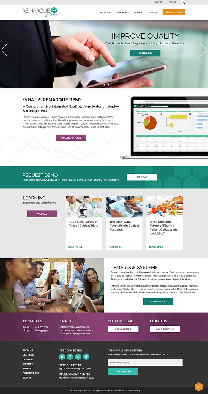 Remarque Systems Home Page